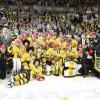 Liga mistrů: Specialista na evropský hokej i britská divoká karta