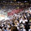 TOP 5: Tohle jsou nejlepší hokejisté play off Tipsport extraligy