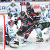 Hokejista, který hrál pod Jágrem za Kladno, bude trénovat v KHL!