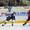 Liberci se vrací hokejista z NHL!